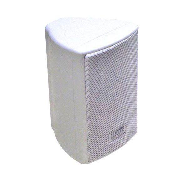 Castone CE-CWS23B/W 1,5W; 3W; 6W (3 fokozat), fehér színű, kis méretű kétutas beltéri hangdoboz.